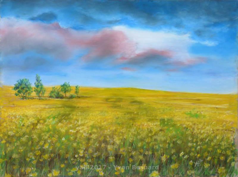 Marée jaune peinture aux pastels secs de bretagne