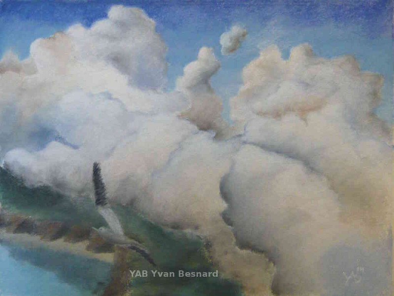 Egnal Choice soft pastel painting by yab